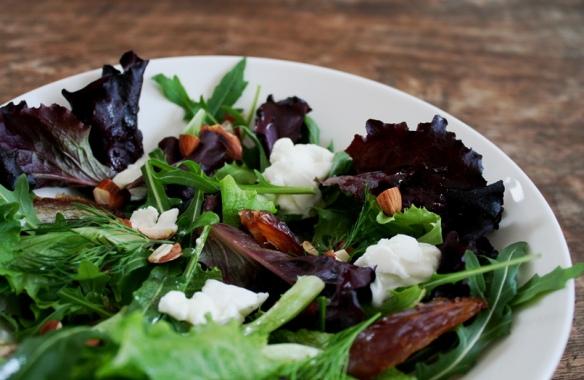 salade dadels dille mozarella 1 bw ok