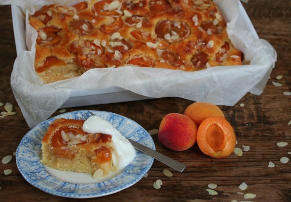 Abrikozenplaatcake